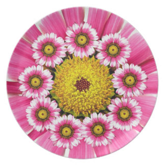 Pink and Yellow Gerbera Daisy Plate