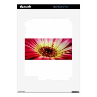 Pink and Yellow Gerbera Flower Macro Photography iPad 2 Decals