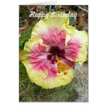 Pink and Yellow Hibiscus Tropical Flower Birthday Cards
