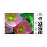 Pink and Yellow Hollyhocks Postage Stamps