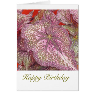 PINK AND YELLOW-ISH GREEN BEGONIA/HAPPY BIRTHDAY CARD