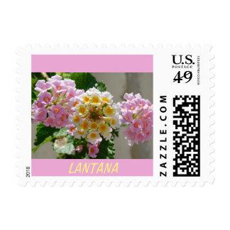 Pink and Yellow Lantana Postage