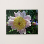 Pink and Yellow Peonies Beautiful Floral Garden Jigsaw Puzzle