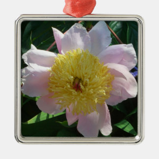 Pink and Yellow Peonies Beautiful Floral Garden Metal Ornament