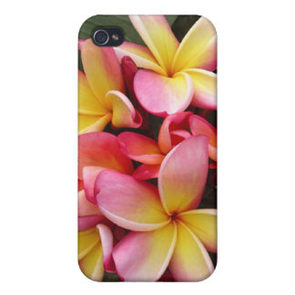 Pink and Yellow Plumeria iPhone 4/4s Case