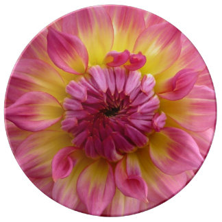 Pink and yellow porcelain dahlia plate porcelain plate