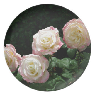 Pink and yellow rose blooms plates