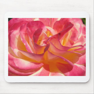 Pink and Yellow Rose Mouse Pad