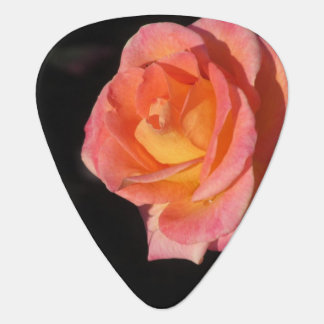 Pink and Yellow Roses Guitar Pick