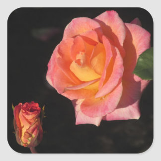 Pink and Yellow Roses Square Sticker
