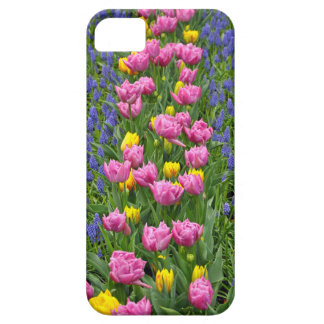 Pink and yellow spring tulips iPhone SE/5/5s case