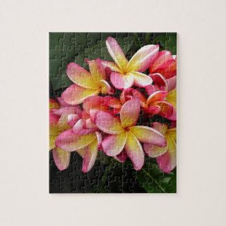 Pink and Yellow Tropical Plumeria Flowers Jigsaw Puzzle