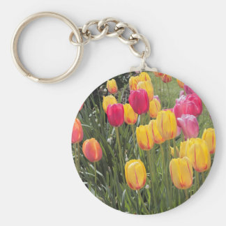 Pink and Yellow Tulip Flowers Basic Round Button Keychain
