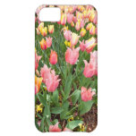 Pink and yellow tulips in a flower bed iPhone 5C case