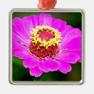 Pink and Yellow Zinnia Flower Metal Ornament