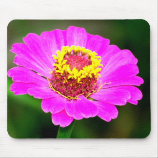Pink and Yellow Zinnia Flower Mouse Pad