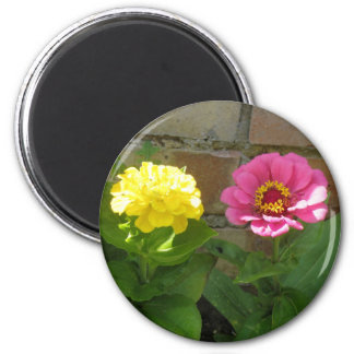 Pink and Yellow Zinnias Magnet