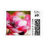 Pink Anemone Stamp