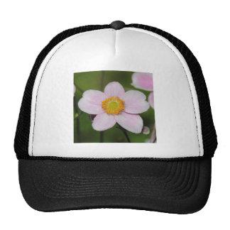 Pink Anemone Trucker Hat