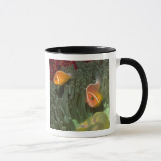Pink Anemonefish in Magnificant Sea Anemone Mug