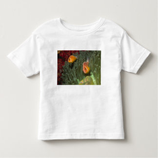 Pink Anemonefish in Magnificant Sea Anemone Toddler T-shirt