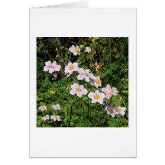 Pink Anemones Card