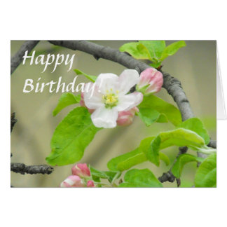 Pink Apple Blossom Greeting Card
