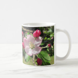 Pink Apple Blossom Mug