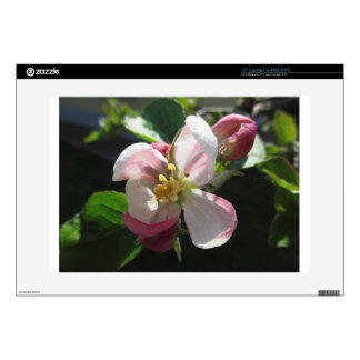 """Pink apple blossoms 15"""" laptop decal"""