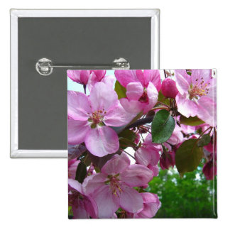 Pink Apple Blossoms Pinback Buttons