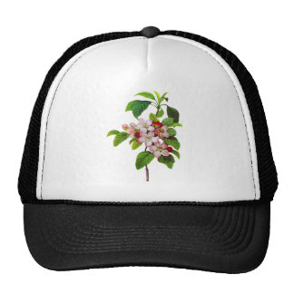 Pink Apple Blossoms by Pierre Jopseph Redoute Trucker Hat
