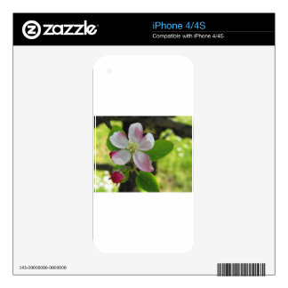 Pink apple blossoms decals for the iPhone 4S