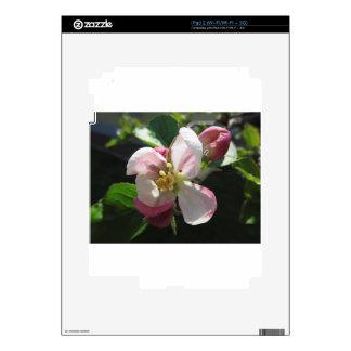 Pink apple blossoms iPad 2 skin