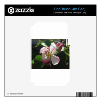 Pink apple blossoms skin for iPod touch 4G