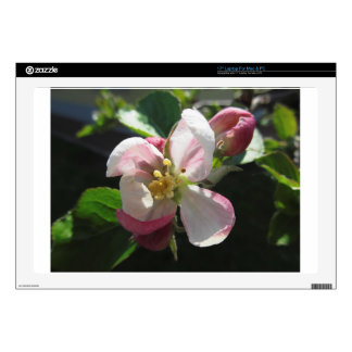 Pink apple blossoms skin for laptop