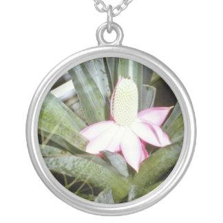 Pink Archmea Mariae-Reginae (Urn Plant) flowers Necklace