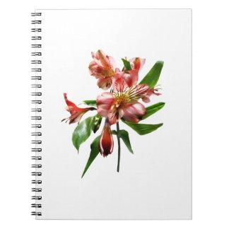 Pink Asiatic Lilies Closeup Spiral Notebook