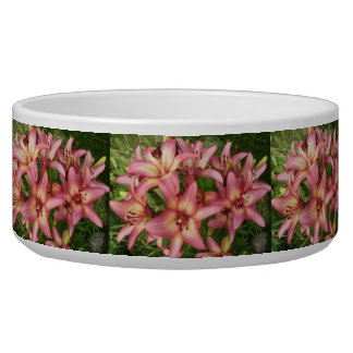 Pink Asiatic Lily Bowl