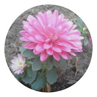 Pink Aster Flowers Eraser