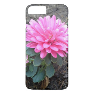 Pink Aster Flowers iPhone 7 Plus Case