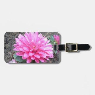 Pink Aster Flowers Luggage Tag