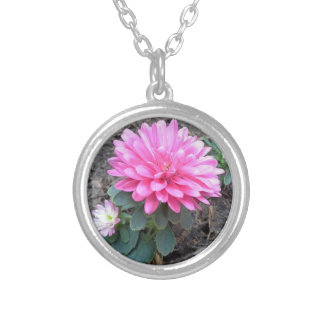 Pink Aster Flowers Silver Plated Necklace