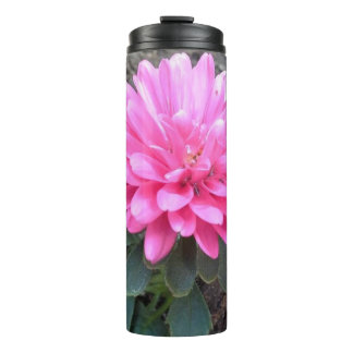 Pink Aster Flowers Thermal Tumbler