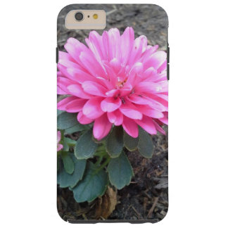 Pink Aster Flowers Tough iPhone 6 Plus Case