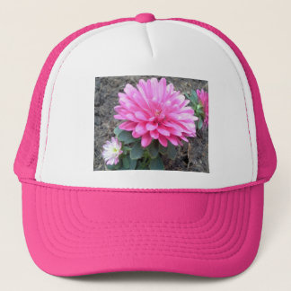 Pink Aster Flowers Trucker Hat