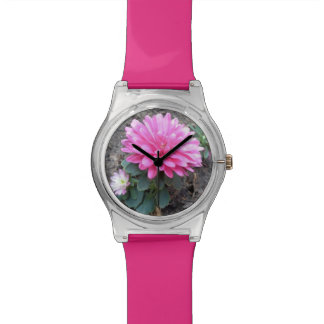 Pink Aster Flowers Watch