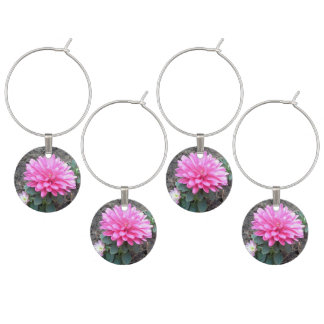 Pink Aster Flowers Wine Charm