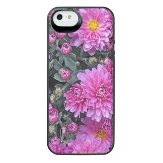 Pink Aster iPhone 5/5s Power Gallery™ Battery Case