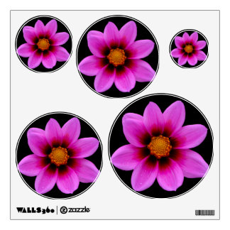 Pink Asteraceae 5 Room Graphic