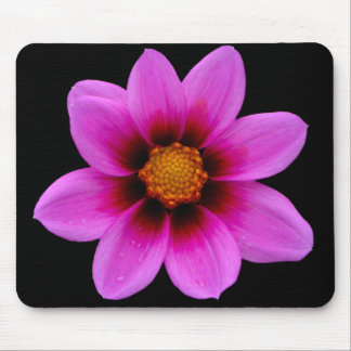 Pink Asteraceae Mouse Pad
